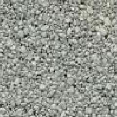 Shasta White
