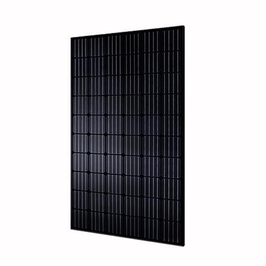 35 mm 300 Watt RG Black-Series 60-Cell Mono-Crystalline Type Solar Module with All Black Frame