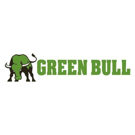 Green Bull 20' Aluminum Extension Ladder