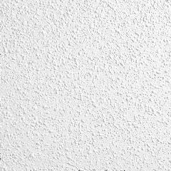"Armstrong 5/8"" x 2' x 2' Georgian™ High Washability Ceiling Panels..."