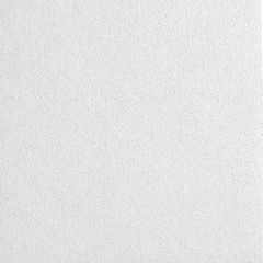 """Armstrong 1"""" x 2' x 6' Lyra® PB Ceiling Panels with 9/16"""" Square..."""